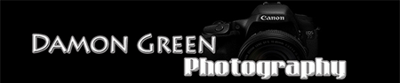 damongreen.com logo